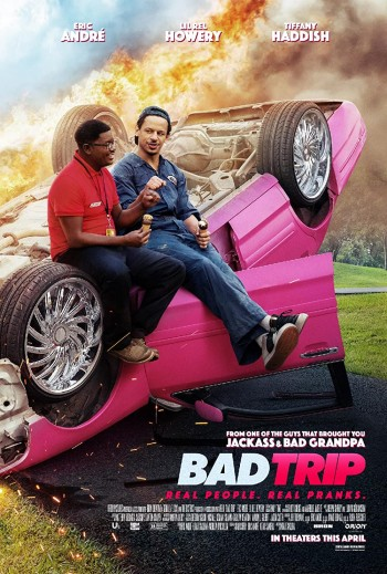 Bad Trip 2020 Dual Audio Hindi Eng Full Movie Download