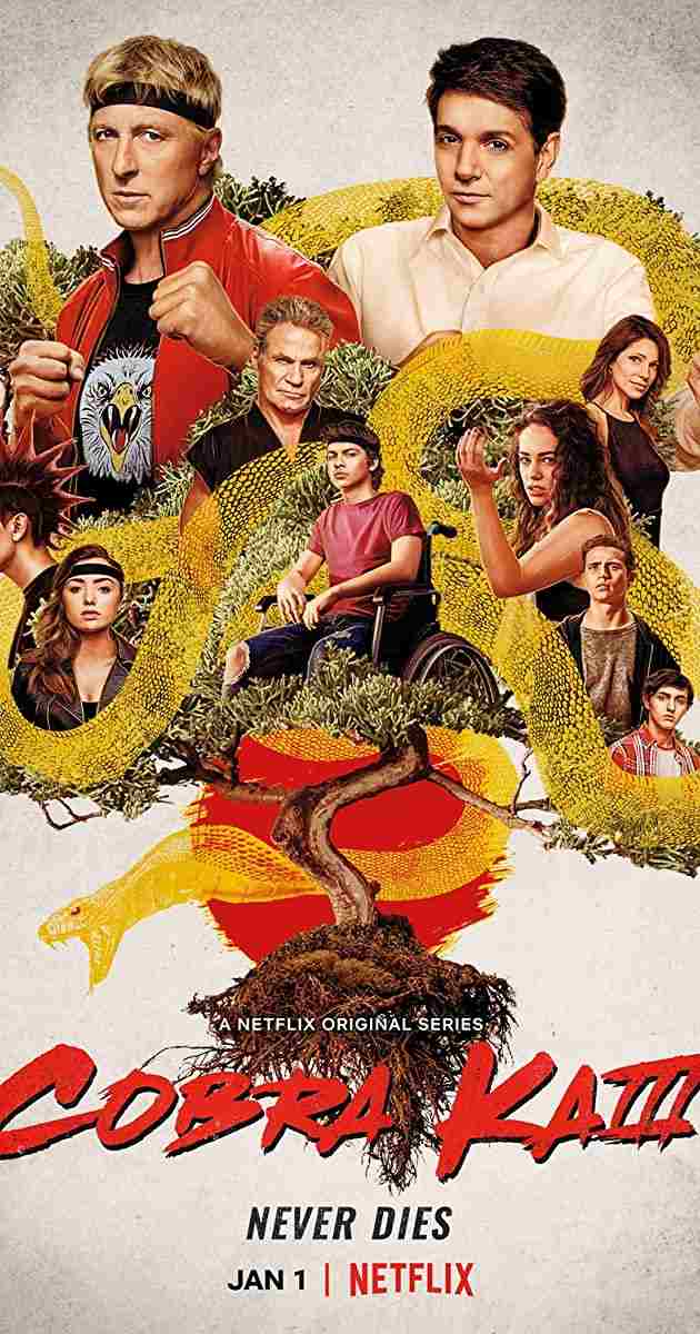 Cobra-Kai-S03-2021-Hindi-Completed-Web-Series-HEVC