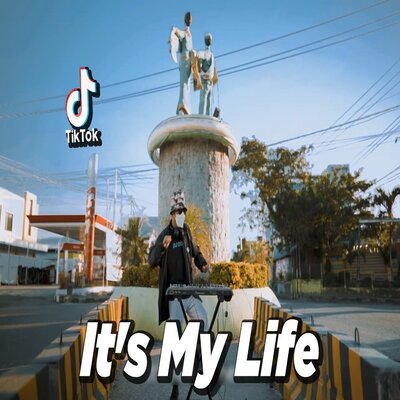 Dj Desa - Dj Its My Life La La La X India Mush Up 2 X Dj Maimuna Poding Mp3